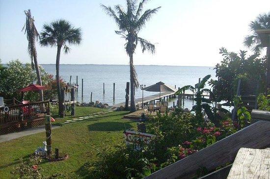 Dolphin Inn:                                     Spectacular view !