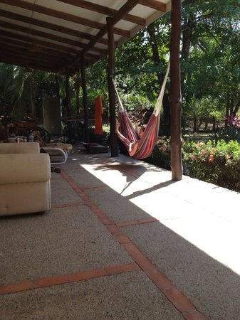 Nosara Beach Hostel:                   hammocks outside the hostel