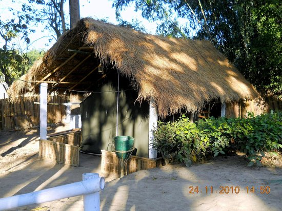Nature Hunt Eco Camp, Kaziranga: Tent