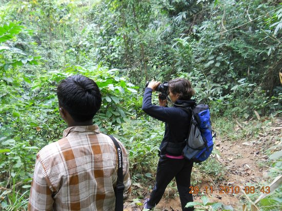 Nature Hunt Eco Camp, Kaziranga: Activity