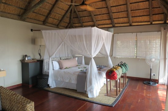 Savute Safari Lodge:                   The Room