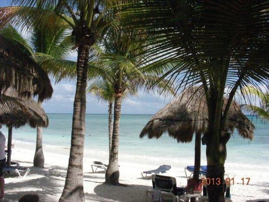 Grand Palladium White Sand Resort & Spa: Beautiful beach, a few rocky areas, some good snorkeling
