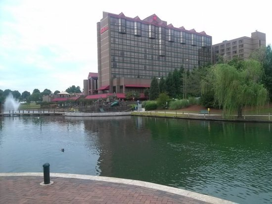 Hilton Charlotte University Place :                                     View of the hotel from across the lake.