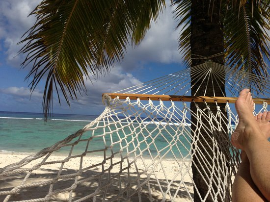 The Anchorage Restaurant & Bar:                   Hammock time