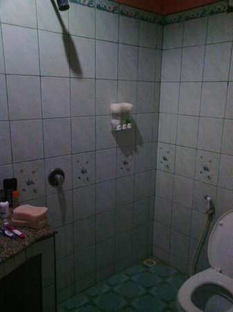 Andaman Beach Resort:                   wet room / toilet