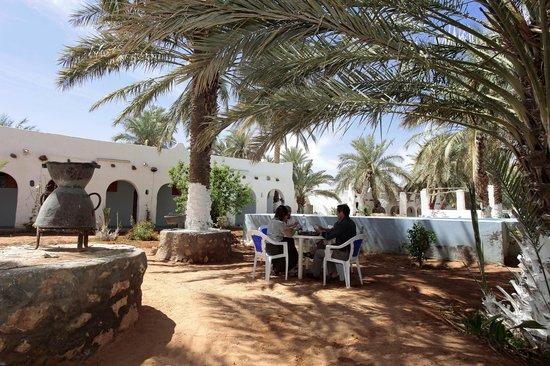 M'Zab Ghardaia: espace jardin