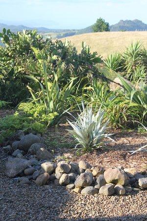 Manawa Ridge:                   Gardens