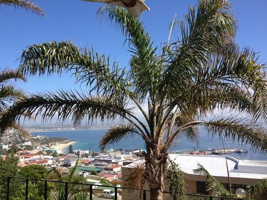 Mossel Bay Guest House:                   View from the pool