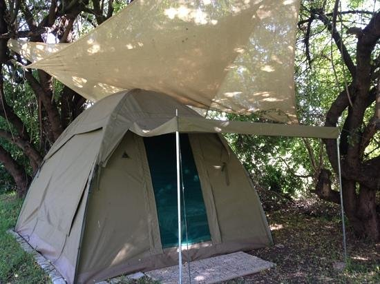 Magnolia Guesthouse:                                     Tent