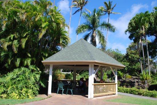 Punaluu Bake Shop and Visitor Center:                   spacious outdoor dining