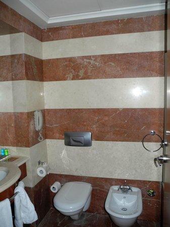 Crowne Plaza Hotel Beirut: Very impressive stonework