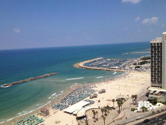 إنتركونتيننتال ديفيد تل أبيب:                   panorama                 