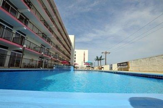 Beach Terrace Motor Inn: Pool