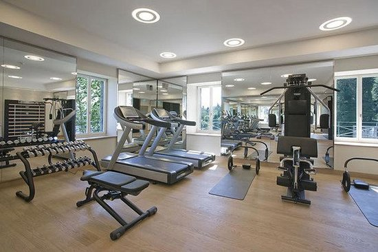 Hotel Villa Honegg : Gym