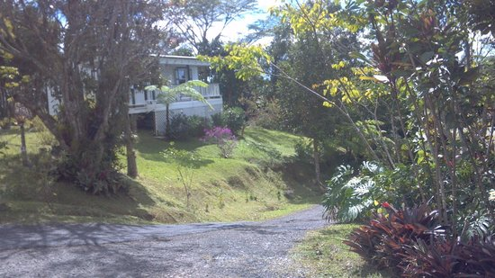 Hacienda Pomarrosa :                   little bungalow