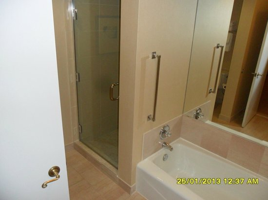 Chicago Marriott Suites O'Hare :                   Separate shower and bath