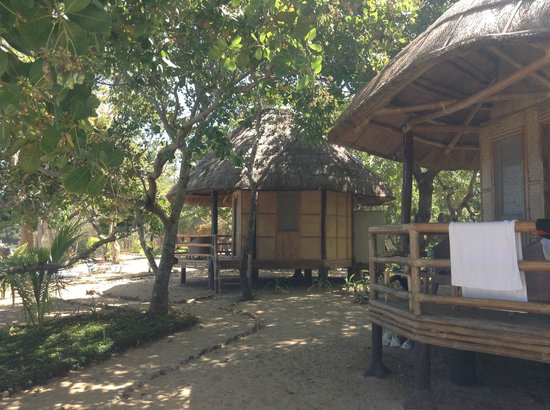 Cashew Grove Beach Resort:                   native style cottages