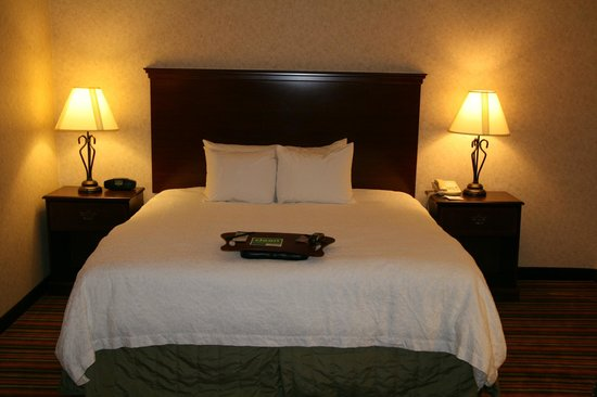 Hampton Inn Danville: Standard King - Nonsmoking