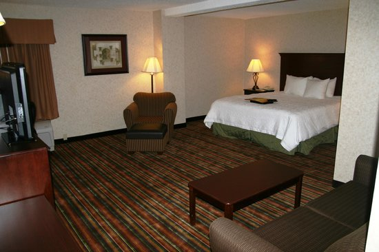 Hampton Inn Danville: King Study w/ Sleeper Sofa- Nonsmoking