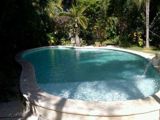 Siboney Beach Club:                   Pool in the garden