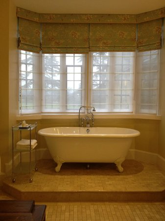 Ellenborough Park:                                     the tub