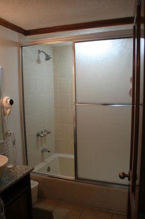 Apartotel & Suites Villas del Rio: Shower area