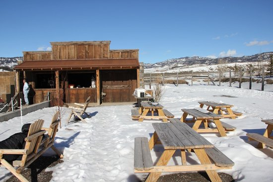 Montana Grizzly Encounter: Gift Shop & Picnic Area