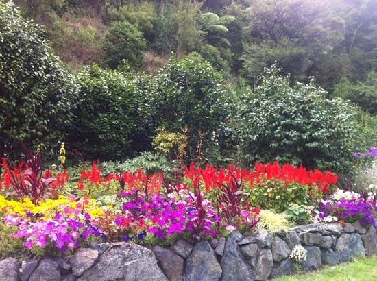 Whangarei Quarry Gardens: Lower Flower Garden