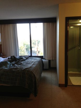 Hyatt Place Busch Gardens: looking from next to tv towards bed & window (bath to right)