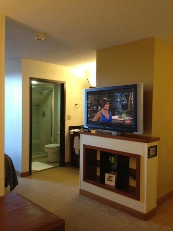 Hyatt Place Busch Gardens: looking from living area towards bathroom/vanity area (past tv)