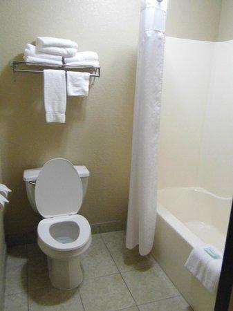 Holiday Inn Express Tuscola:                   Plenty of Towels