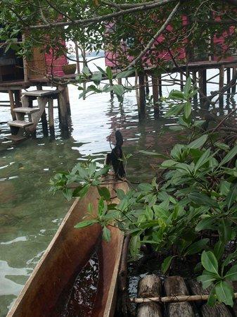 Urraca Private Island:                                     ..
