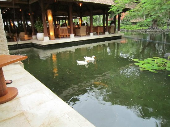 Grand Hyatt Bali:                   グランドハイアット パリ クラブラウンジ
