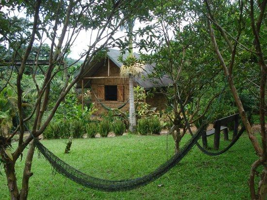 Cabanas Bambu, Mindo: Cabañas Bambú, Mindo, Ecuador.