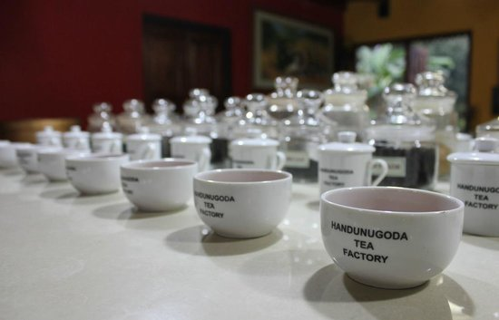 Handunugoda Tea Estate:                   Boutique to sample what flavour to purchase