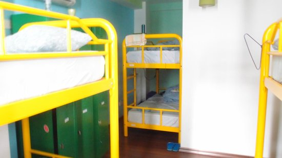 Beary Nice! by a beary good hostel:                                                                         Sleeping room