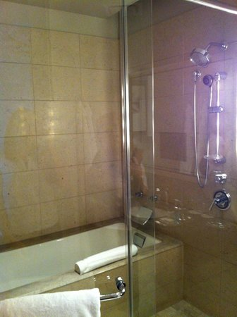 Trump International Hotel & Tower Chicago:                                     tub in the shower???