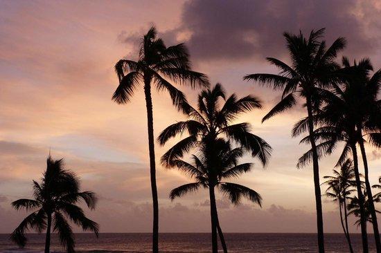 Sheraton Kauai Resort :                   Abenddämmerung