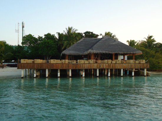 Eriyadu Island Resort:                   Bar und Coffeeshop