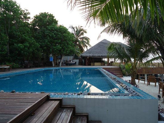 Eriyadu Island Resort:                   Pool bei Bar/Coffeeshop