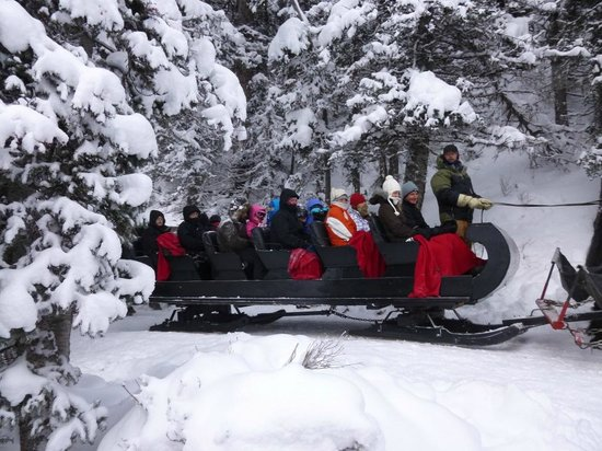 Fairmont Chateau Lake Louise: Sleigh ride on Christmas Day