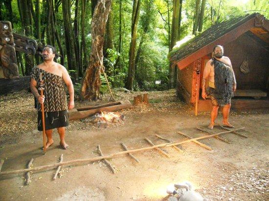 塔馬基毛利村照片