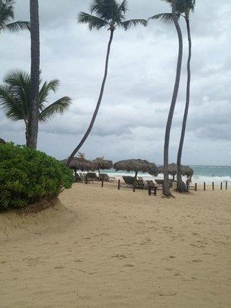 Paradisus Punta Cana Resort:                   пляж