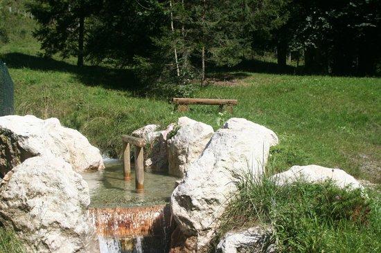 Auf'm Feggenlehen: Natur-kneipp Trettbecken
