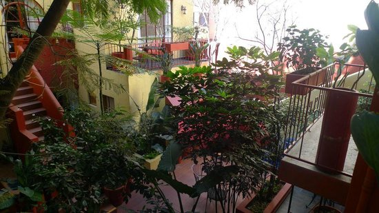 The Red Tree House: View from balcony