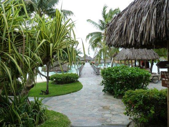 InterContinental Bora Bora Le Moana Resort:                   jardins de l'hôtel