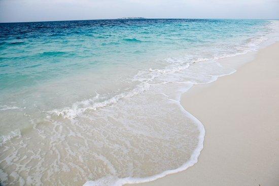 Cocoa Island by COMO :                   清澈的海水