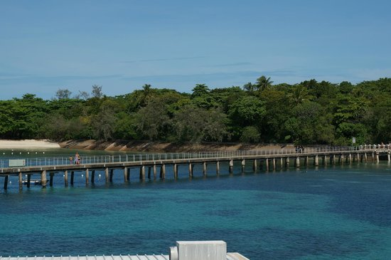 Green Island Cruise - Day Tour (Big Cat Green Island Reef Cruise):                   Green Island Jetty