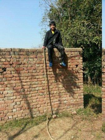Botanix Nature Resort: hurdle wall
