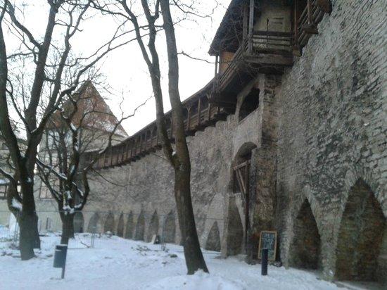 von Stackelberg Hotel Tallinn:                   old town